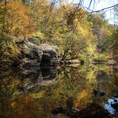 Wissahickon Hike with Brad Maule
