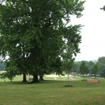 Parks on Tap at Burholme Park