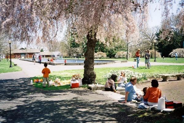IL Horticultural Center picnics