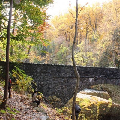 Guided Trail Run in the Wissahickon