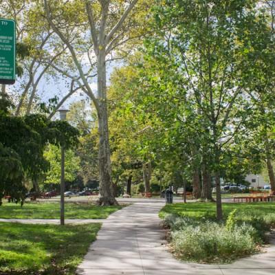 Parks on Tap at Clark Park
