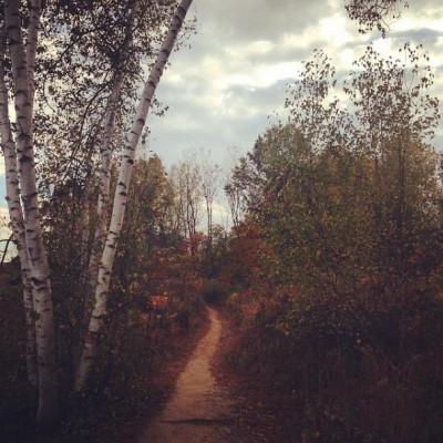 Go Take a Hike! Upper Wissahickon