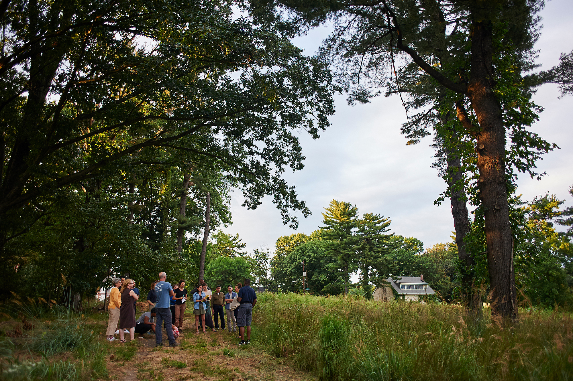 Meadow Mansions: Bird Walk with Keith Russell