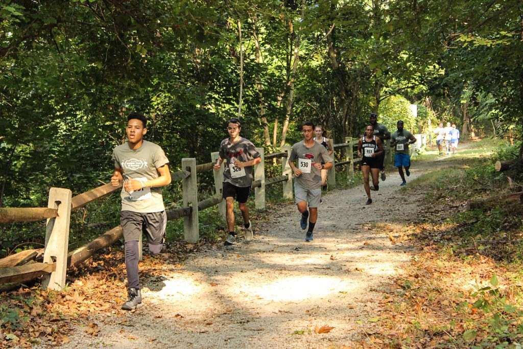 5 great reasons to walk or run in the virtual Boxers' Trail 5k! Thumbnail