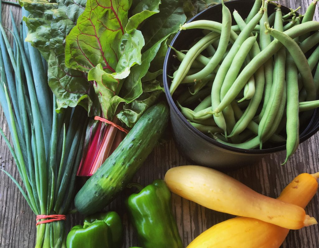 Everything to know about Carousel House Farm's new CSA program Thumbnail