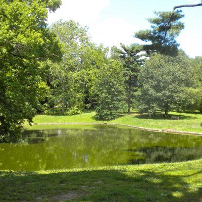 Parks on Tap at Pastorius Park