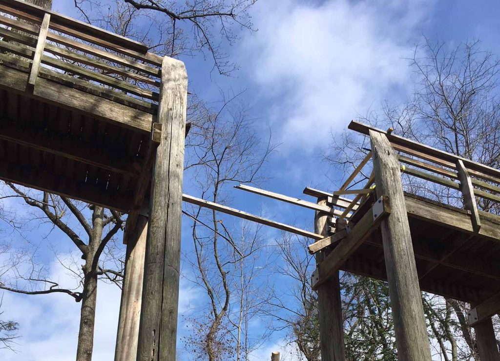 We're restoring 'Pavilion in the Trees' in West Fairmount Park Thumbnail