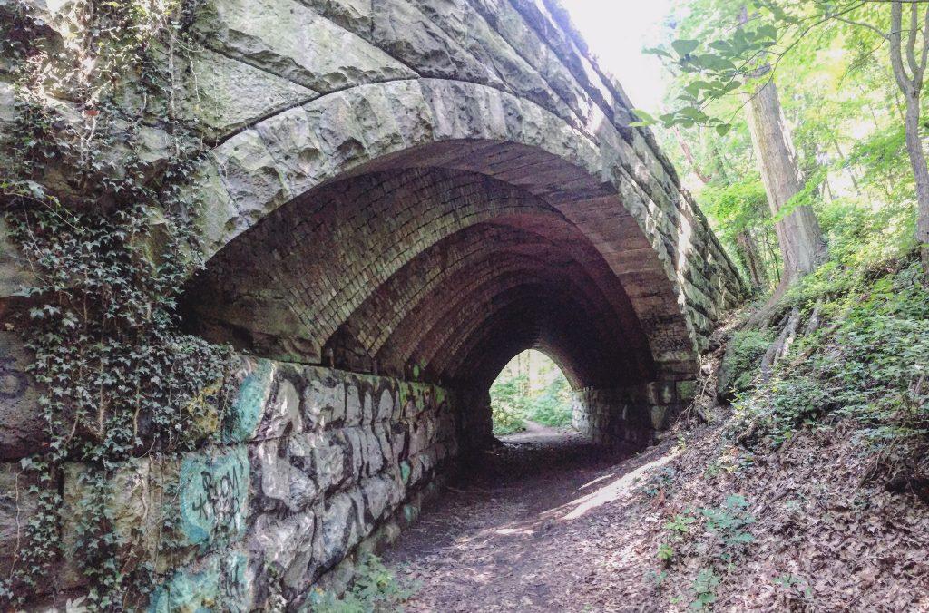Guided Trail Run along the Trolley Trail Thumbnail