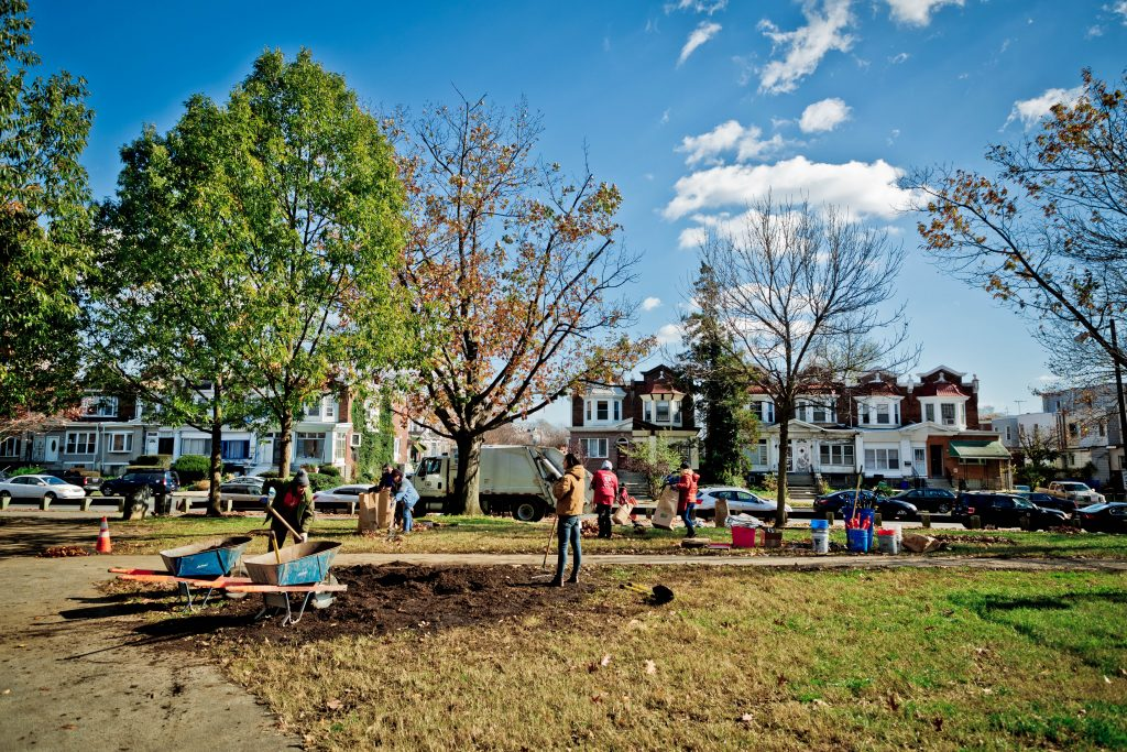 Everything to know about Love Your Park Fall Service Day 2019 Thumbnail