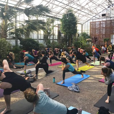 Greenhouse yoga at the Horticulture Center