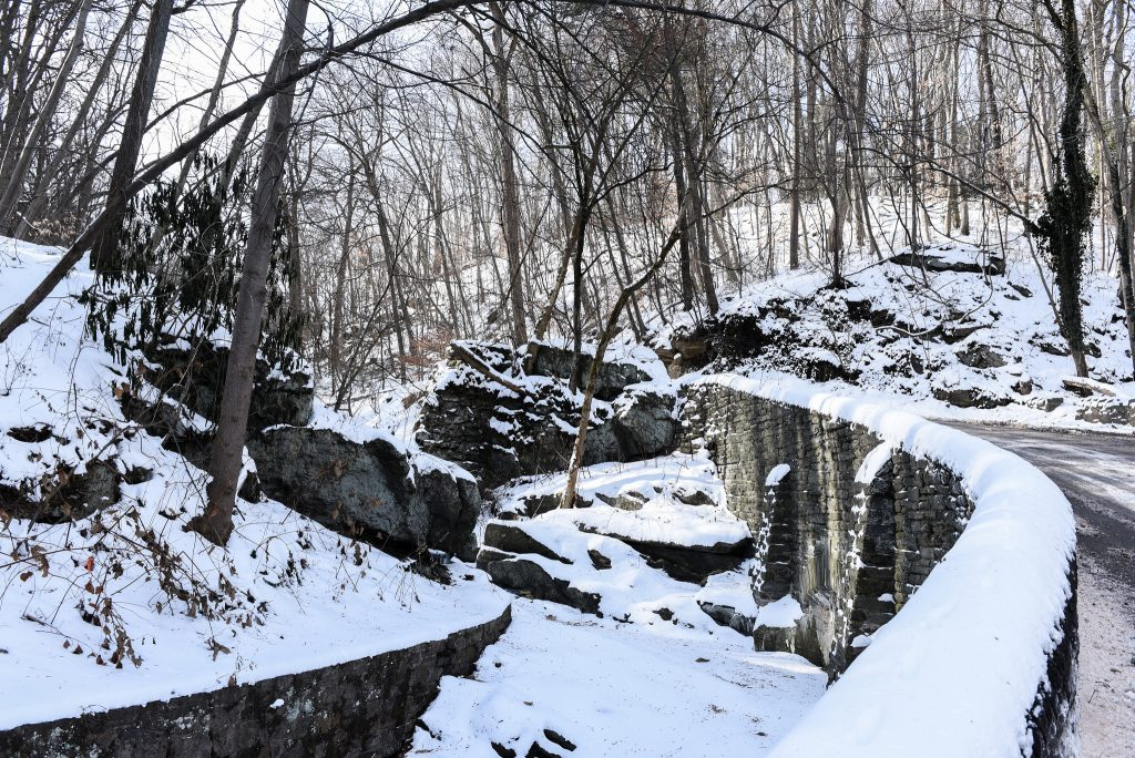 Volunteer in the Wissahickon Thumbnail
