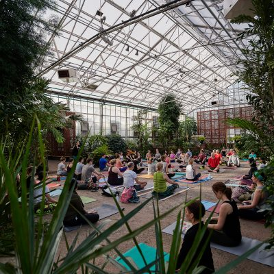 Virtual Greenhouse Yoga