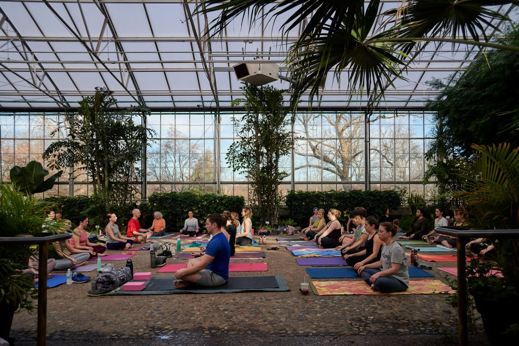 Greenhouse yoga at the Horticulture Center Thumbnail