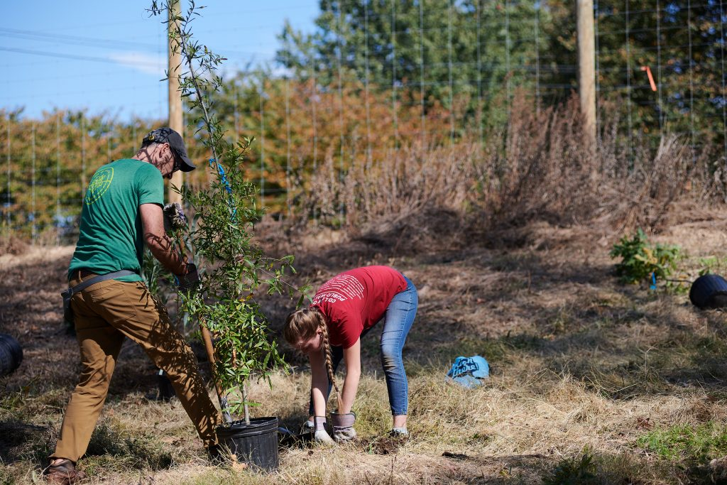 5,000 trees planted to restore West Fairmount Park forest as Urban Forestry Plan launches Thumbnail