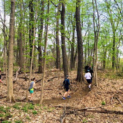 Training on Trails Run