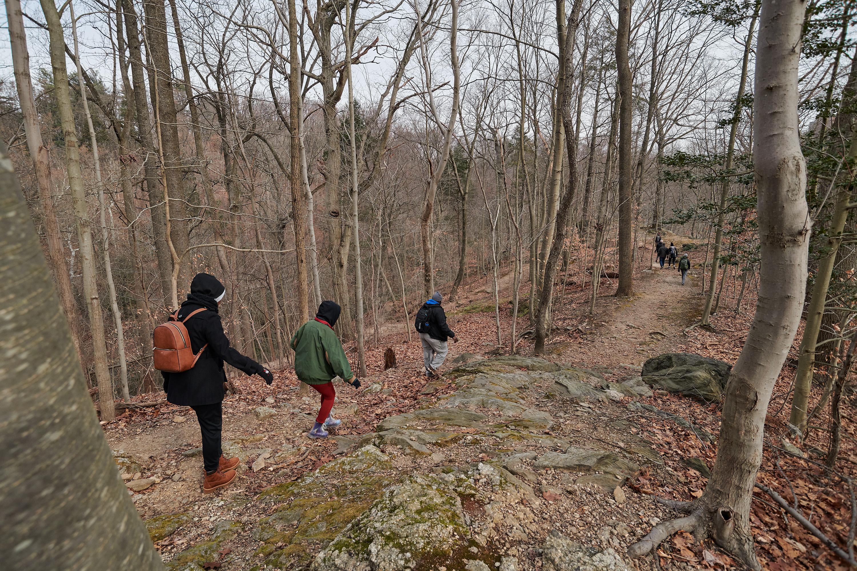 Wissahickon Hike with Brad Maule