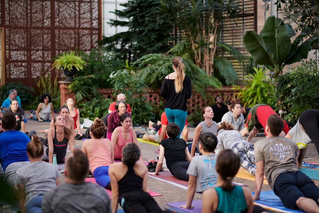 Meet Lauren Daddis: Our beloved greenhouse yoga teacher! Thumbnail