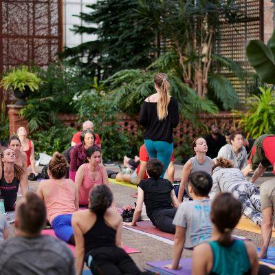 Virtual yoga with Lauren Daddis
