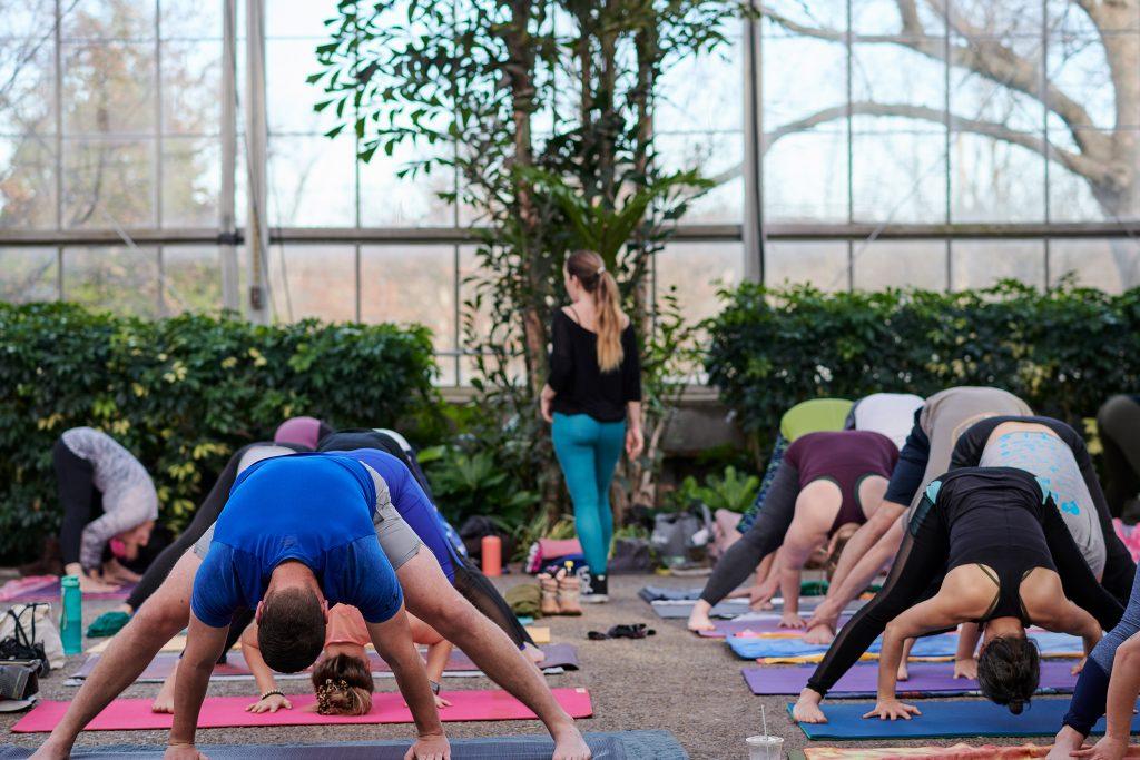 Virtual yoga with Lauren Daddis Thumbnail