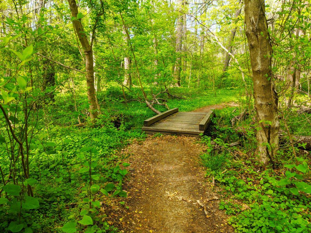 5 ways to discover Fairmount Park this summer Thumbnail