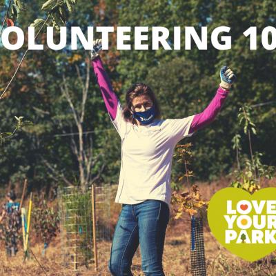 Volunteering 101 Webinar