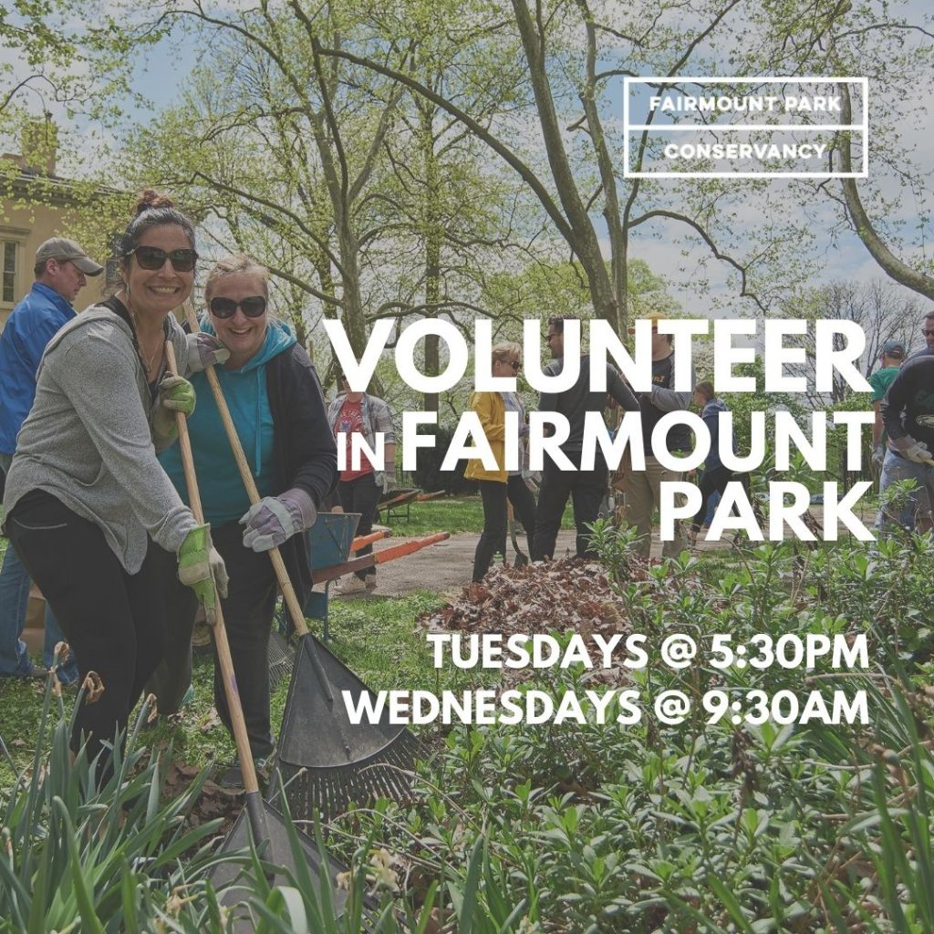 Join us for weekly volunteer events in Fairmount Park Thumbnail