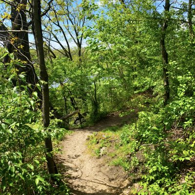 Trails to Ales: Guided Hike & Drinks with Bra...