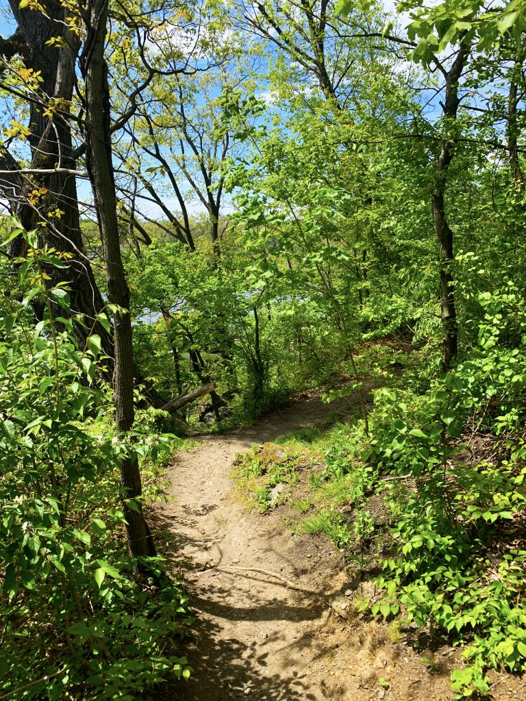POSTPONED: Trails to Ales: Guided Hike & Drinks with Brad Maule Thumbnail
