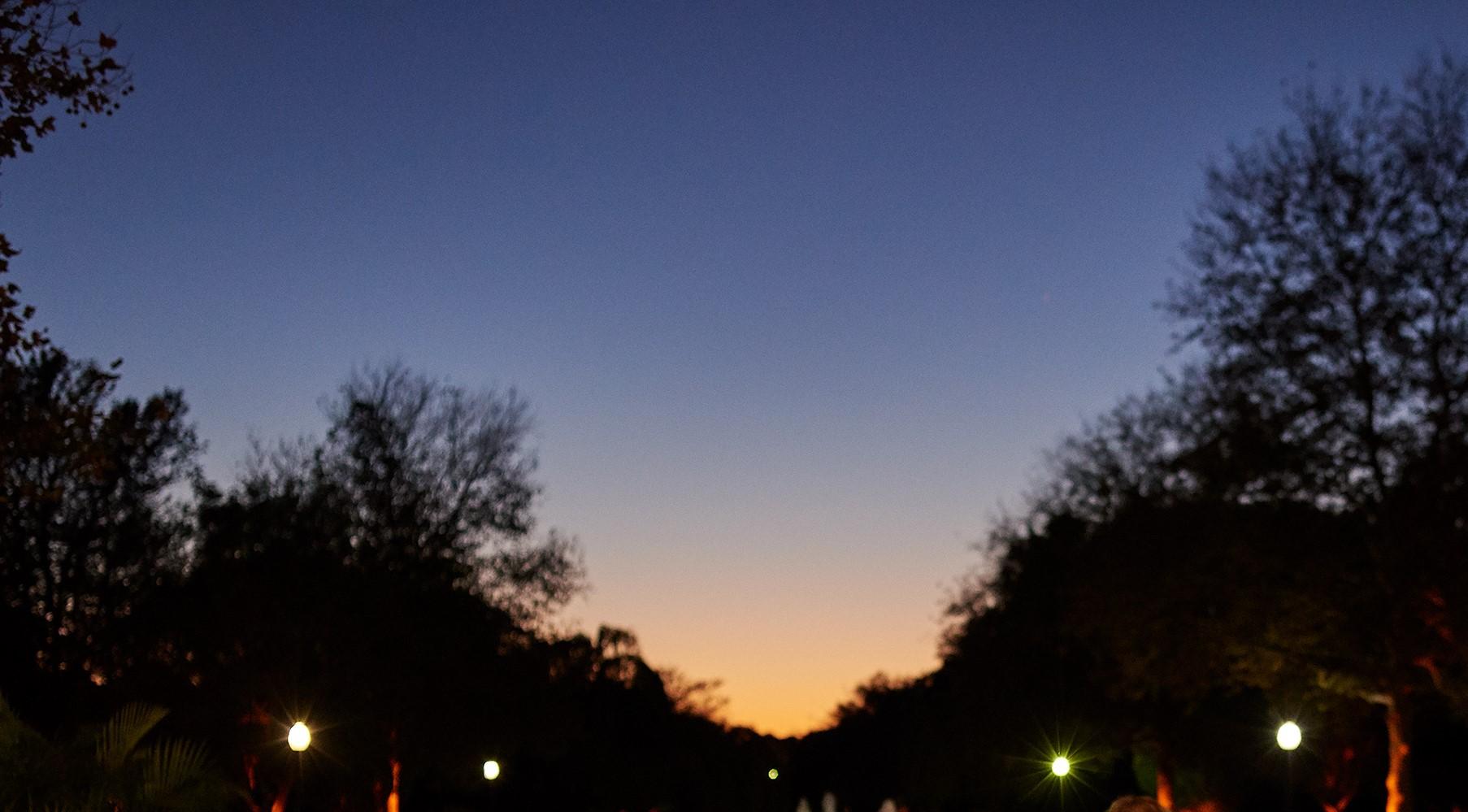 Park after Dark: Stargazing in the Grass at Lemon ...