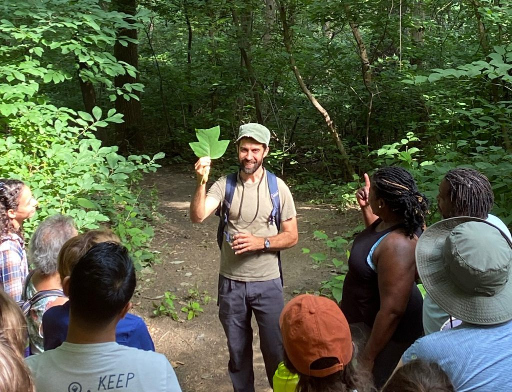 Tree Tour and Hike at FDR Park Thumbnail