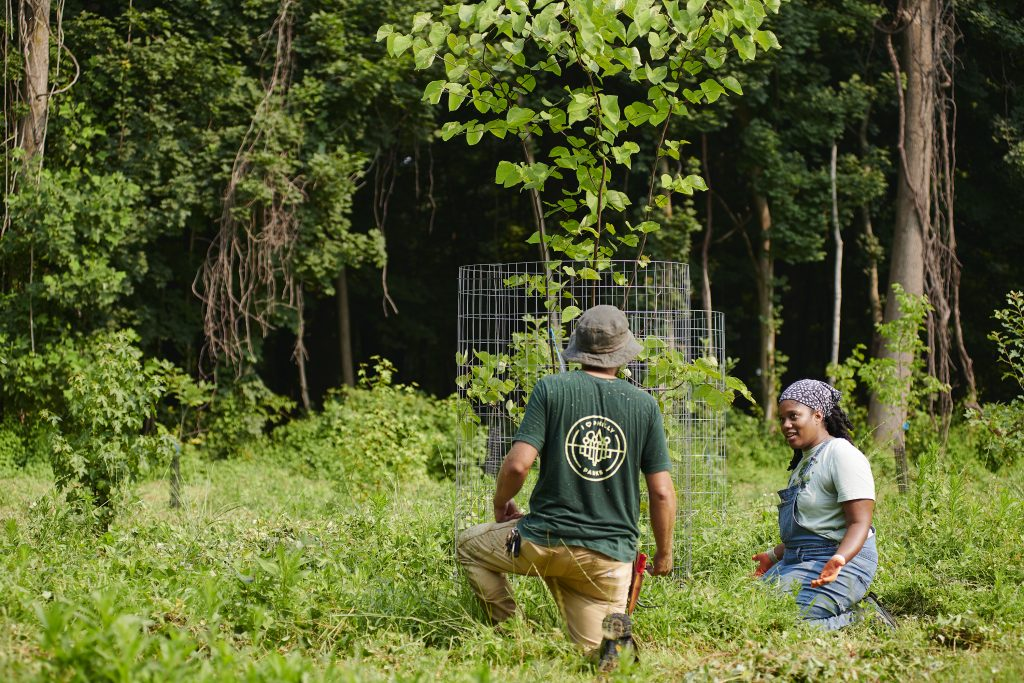 Wednesday Weeding at Trolley Trail Thumbnail