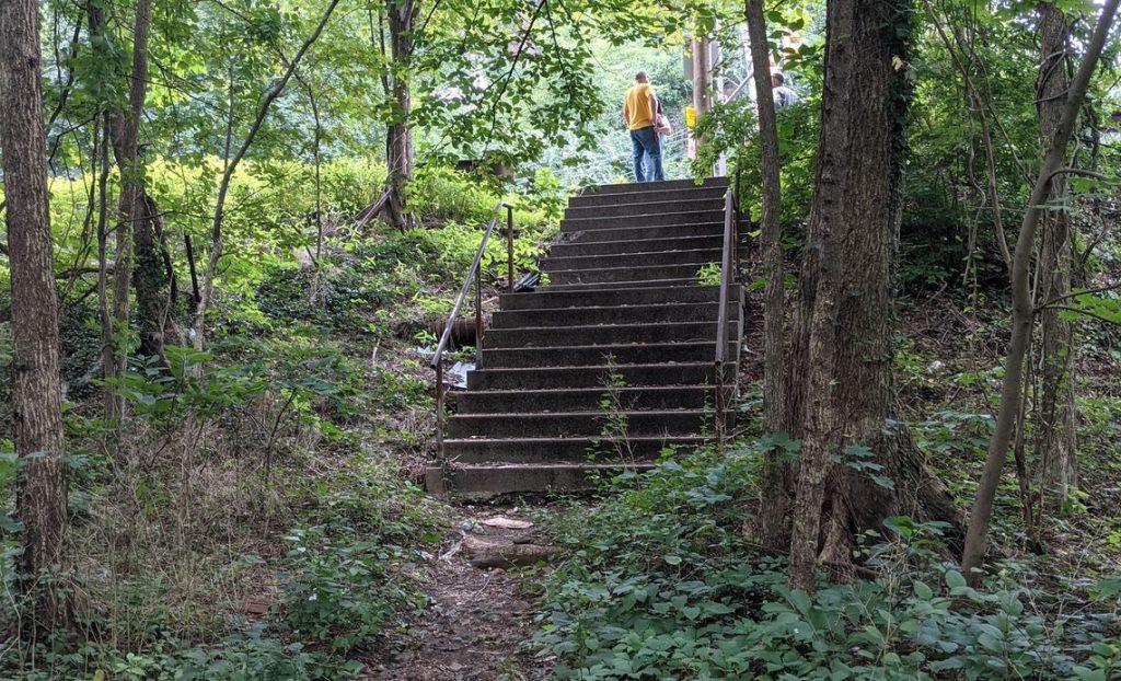 Restore the Forgotten Wynnefield Trail Thumbnail